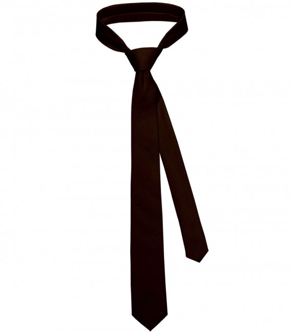 Tie Navona Silk Brown