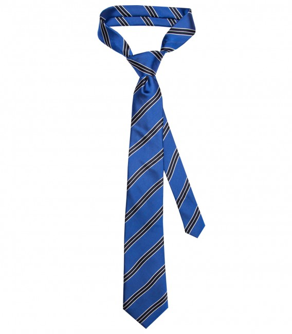 Stain Proof Tie Trevi Silk BluetteBlue