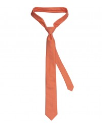 Ties Navona Silk Orange