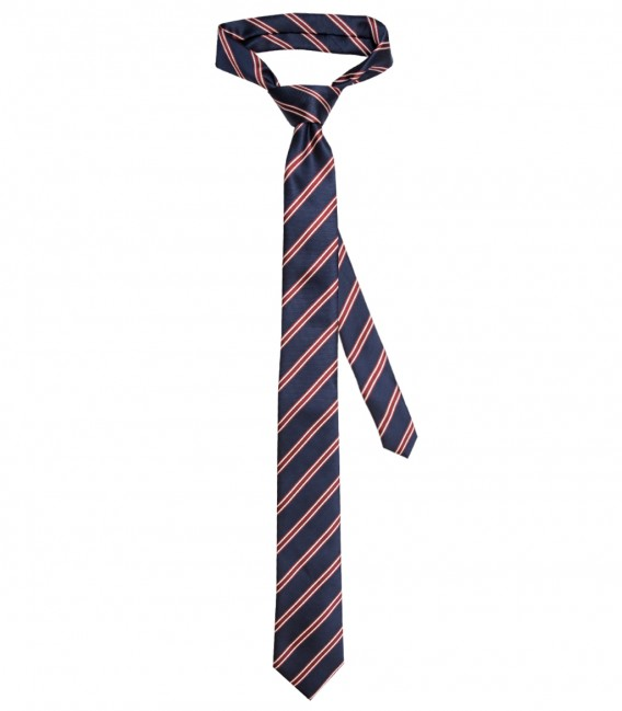 Ties Navona Silk BlueBordeaux