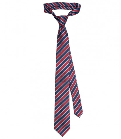 Ties Navona Silk blue Purple