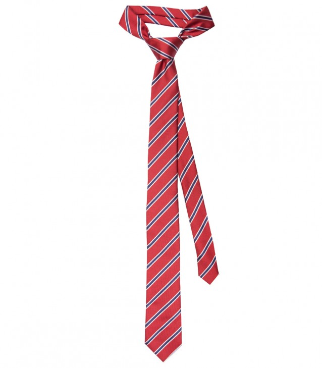 Ties Navona Silk Red Bluette
